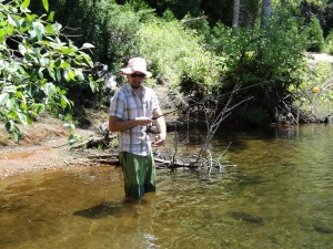 spinners to catch trout in the river